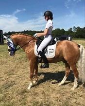 palomino pony stævne