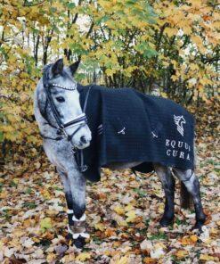 catago cooler på pony