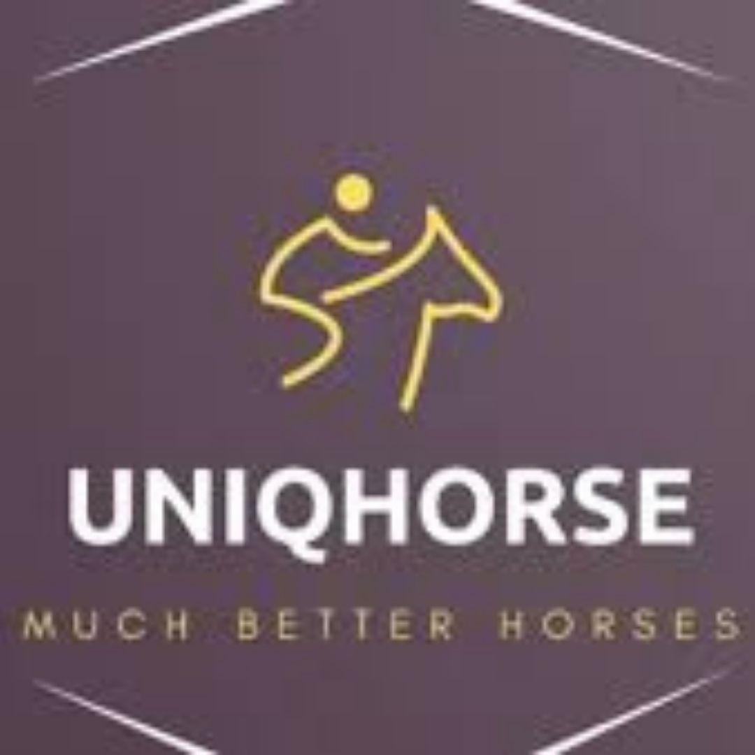 Uniq Horse